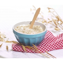 SanaSlank Dessert Havermout naturel (5 maaltijden)