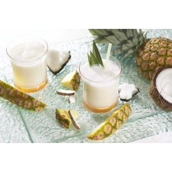 SanaSlank Koude drank Pina Colada (5 maaltijden)