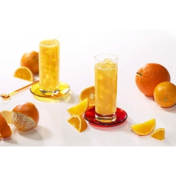 SanaSlank Koude drank Sinaasappel (5 maaltijden)